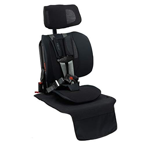 Purchase WAYB Pico Travel Car Seat and Vehicle Seat Protector Bundle