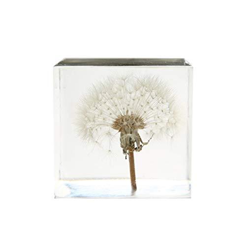 VOSAREA 3D-Pusteblume Kristallglas-Würfel, transparent, Schreibtisch-Statue, Ornament für Geburtstag, Hochzeit, Valentinstag, Geschenk, Heimdekoration