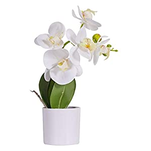 Artificial Orchids Flower with Decorative Vase, Artificial Flower Arrangement, Lifelike Silk Flower, Real Looking Plastic Plants Fake Plants for Home Office Wedding Decoration Party Decor(White)