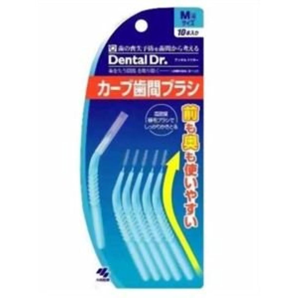 リスキーな白い合図カーブ歯間ブラシM10本×10