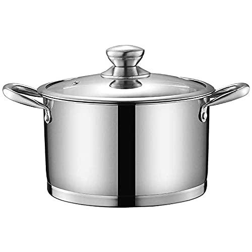 QIXIAOCYB Pote de sopa plato de cazuela, olla de acero inoxidable con tapa de utensilios de cocina de vidrio, asas de prueba de calor, no tóxico, fácil de limpiar, compatible con todas las fuentes de