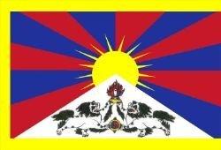 1000 Flags Tibet - Drapeau Lion des Neiges 150 x 90 cm