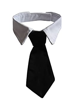 Best tie and collar Reviews