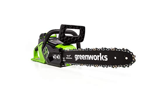 Greenworks CS40L01 Cordless Chainsaw