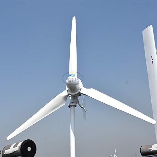 Generador de turbina eólica horizontal de 3 kW, 120 V, 3000 W,...