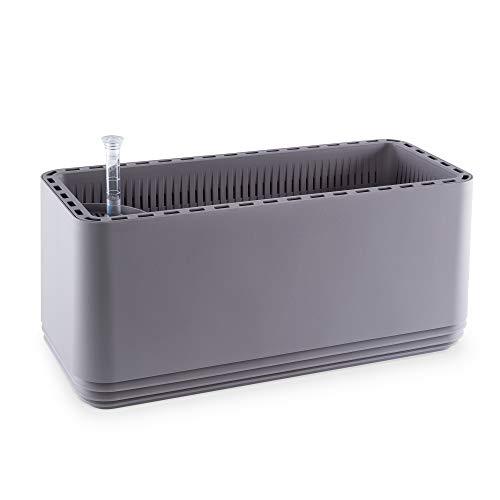 AIRY System L (BxT: 50 x 22 cm) - Patentiertes System mit der Kraft der Pflanzen als natürlicher Luftreiniger und Luftbefeuchter für Innenräume (Light Grey/Light Grey)