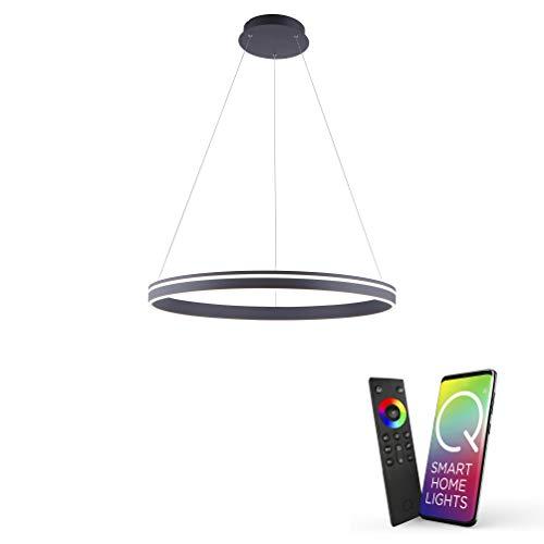 Paul Neuhaus Q-VITO 8412-13 LED Pendelleuchte, Alexa kompatibel Smart Home, dimmbar per Fernbedienung, warmweiß - kaltweiss, Ringform anthrazit