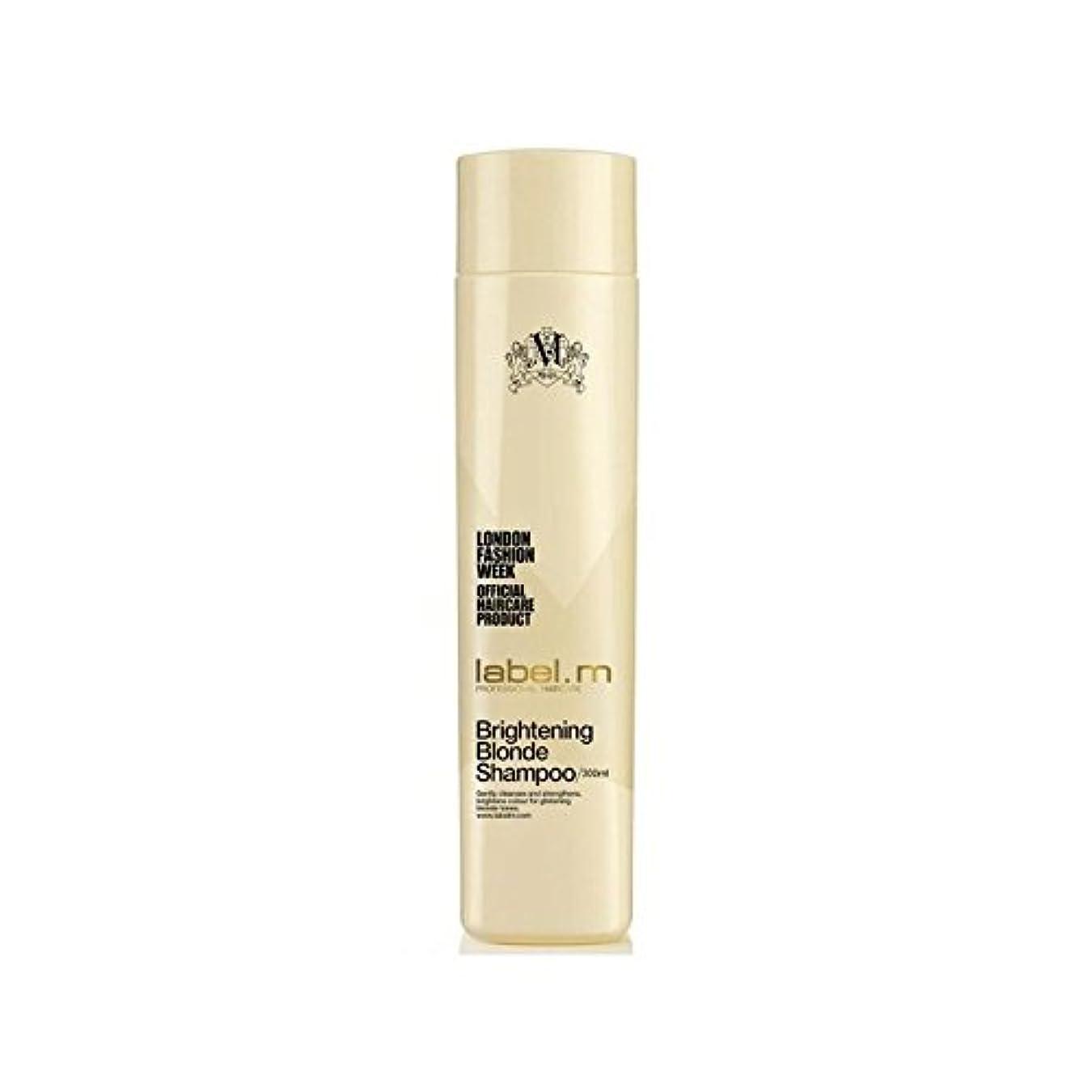 集計思想重要性.明るくブロンドシャンプー(300ミリリットル) x2 - Label.M Brightening Blonde Shampoo (300ml) (Pack of 2) [並行輸入品]