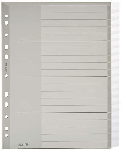 Leitz Register für A4, Deckblatt aus Karton und 20 Trennblätter aus Kunststoff, Taben mit auswechselbaren Einsteckschildchen, Grau, 12780000