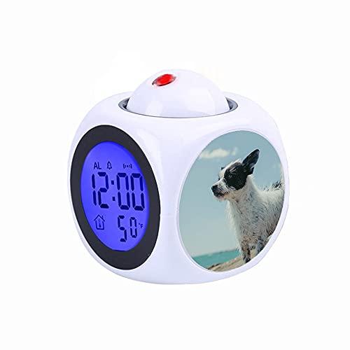 Proyección Digital Niños Reloj Despertador Blanco Proyector LED Termómetro Temperatura Escritorio Hora Indicación de la Fecha Reloj de Mesa Adulto Blanco y Negro Recubierto Corto Perro en Piedra Gris