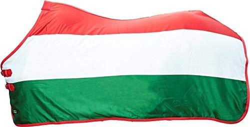 HKM 70167918.0021 afwritsdeken vlaggen, vlag Hungary, 165, Vlag van Hongarije