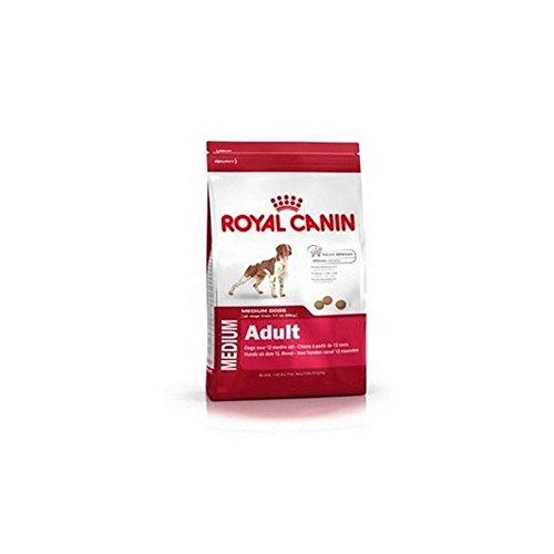 ROYAL CANIN Adulto mediano 4kg