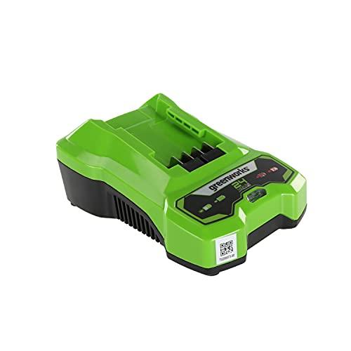 Greenworks Tools Cargador de baterías G24C (salida de Li-Ion 24 V 48W apto para todas las baterías de la serie Greenworks de 24 V)