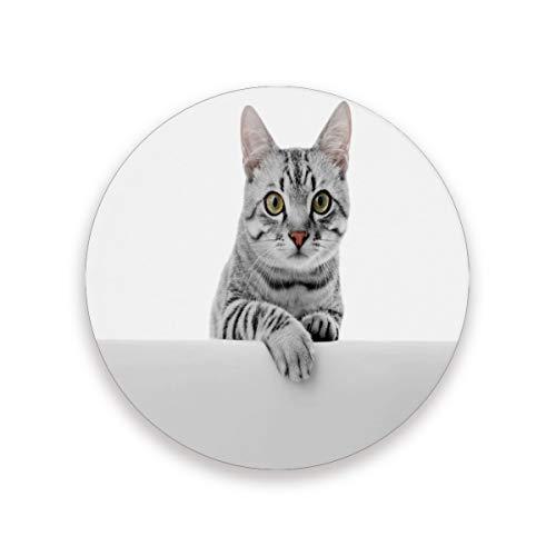 LUCKYEAH - Posavasos redondos para mesa con diseño de gato, resistente al calor, alfombrilla de cerámica de corcho para bebidas, hogar, cocina, bar, juego de 2