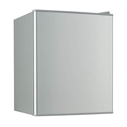 YYhkeby 21L Mini Nevera con congelador para el Dormitorio silencioso silencioso Vintage de Plata portátil para refrigerar la Leche Fresca Jialele