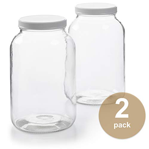 2 Pack 1 Gallon Glass Jar W Plastic Ai Buy Online In Albania At Desertcart