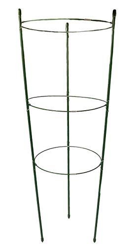 maxpack® Rankhilfe Gartenpflanze Gurkenturm Stützringe für Topfpflanzen Kletterpflanze Tomaten Gurke Pflanze Käfig Spalier robust (H: 75 cm)