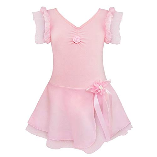 Aaren niños niñas Ballet de los niños del Vestido del tutú Gimnasia Leotardo Ballet de Vestuario Vestidos Dancewear Ropa Traje de la Danza (Color : Pink, Size : XXL)