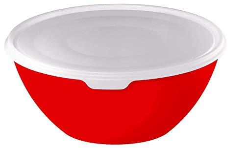 Rotho Caruba Bol 3L avec Couvercle, Plastique (PP) sans BPA, Rouge/Transparent, 3L (24,0 x 24,0 x 11,6 cm)