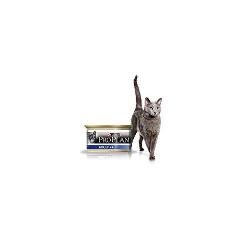 Proplan - Purina Proplan Cat Adult 7+ Thon 24 x 85 grs