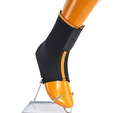 Armor - Tobillera estándar con cierre de velcro para apoyar el pie durante los deportes como balonmano, fútbol, voleibol. Para mujeres, hombres y niños.