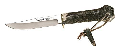 Muela Cuchillo GREDOS GRED-13H hoja de acero MoVa de 12 cm y empuñadura de asta de ciervo y latón para Caza, Pesca, Supervivencia y Bushcraft Realizado en Ciudad Real + Portabotellas de regalo