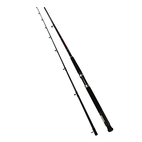 Daiwa Wilderness Downrigger Trolling Freshwater Rod, 8' Length, 2Piece, 8-17 lb Line Rate, Medium/Light Power