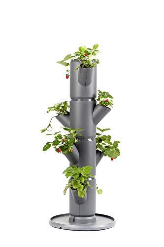 Sissi Strawberry (Starter, anthrazit/grau) - Pflanzgefäß/Topf/Pflanzturm/Hochbeet für Erdbeeren - für Balkon, Garten und Terrasse - Erdbeeren und Kräuter anpflanzen