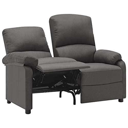 vidaXL Sofa 2-Sitzer Verstellbar Kinosofa Fernsehsofa Heimkino TV Sessel Fernsehsessel Relaxsessel Polstersessel Ruhesessel Liegesessel Dunkelgrau Stoff