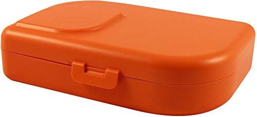 ajaa Bio Nana Brotbox mandarin (6 x 1 Stk)