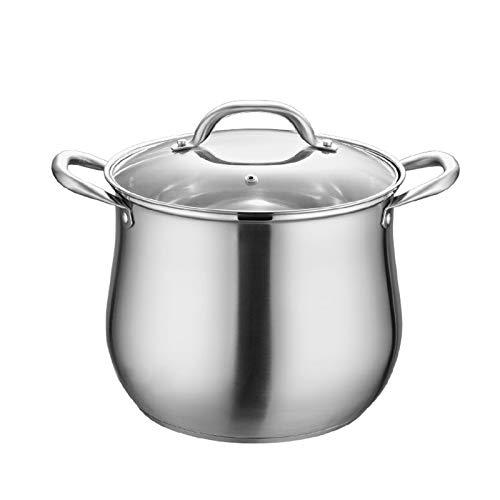 Kaibrite Olla de acero inoxidable con tapa de cristal y mango de acero, acero inoxidable pulido, para verduras, para inducción, 22 x 22 x 25 cm
