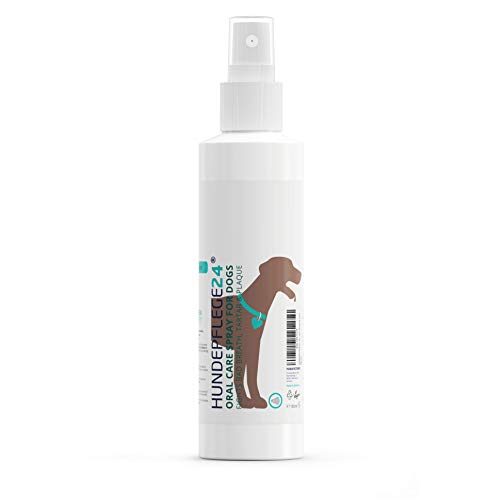 HUNDEPFLEGE24 - Dental care spray for dogs & cats - 150 ml - 100% natural dental care, plaque remover & dog breath freshener with chamomile, mint & liquid calcium