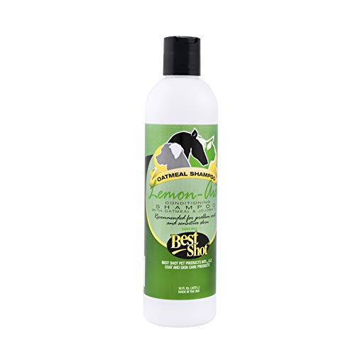 Best Shot Pet Lemon-Aid Oatmeal Wash, 16 oz
