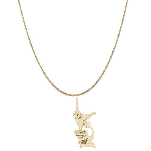 Rembrandt Charms 10K Yellow Gold Microscope Charm on a 10K Yellow Gold Rope Chain Necklace, 18'