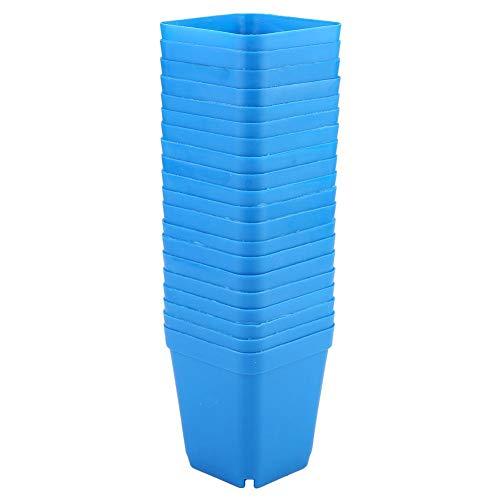 Atyhao 20 macetas de plástico para plantas, mini modernas y suculentas, recipientes pequeños, cuadrados, perfectos para jardinero (azul)