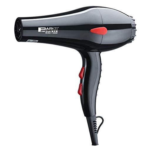 Sèche-cheveux, Souffleur d'air chaud et froid, version améliorée du sèche-cheveux dédié de salon de coiffure de puissance élevée