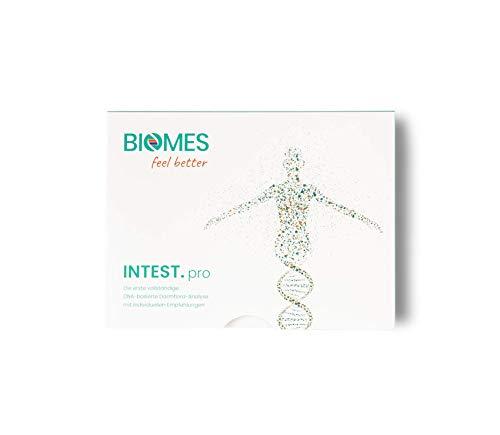 INTEST.pro Darmflora Analyse, Darmbakterien-Test für zu Hause, Stuhlprobe inkl. personalisiertem Ernährungsplan, Darmbeschwerden verstehen, Immunschwächen erkennen, Gewichtsprobleme reduzieren