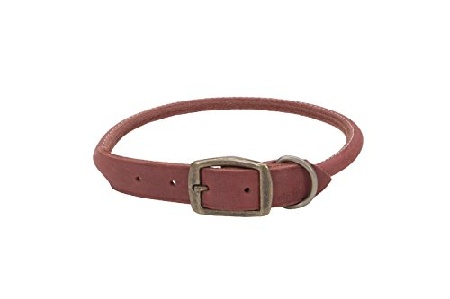 """Coastal Pet Products Circle T Rustic Leather Round Dog Collar, 1"""" x 24"""", Brick Red"""