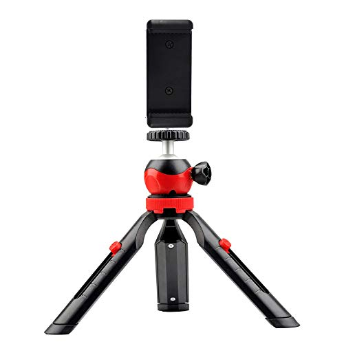 DIGITEK® (DTR-200MT) (18 CM) Portable & Flexible Mini Tripod with Mobile Holder & 360 Degree Ball Head | For Smart Phones | Compact Cameras | GoPro | Maximum Operating Height: 7.87 Inch| Maximum Load Upto: 1 kgs