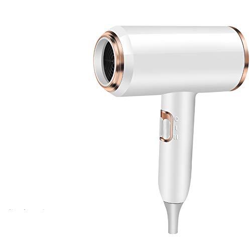 Secador de pelo en casa de alta potencia de iones negativos cuidado del cabello pequeño cilindro de viento viento frío y caliente dormitorio silencioso estudiantes (1)