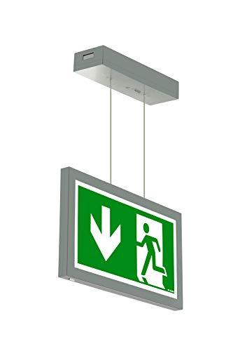 Notleuchte LED Decke Wand Notbeleuchtung Rettungszeichenleuchte Seil Fluchtwegleuchte Notlicht Brandschutzzeichen Rettungszeichen (Pfeil nach unten)