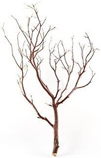 Koyal Wholesale Real Manzanita Branches, 24-Inch, Natural Brown