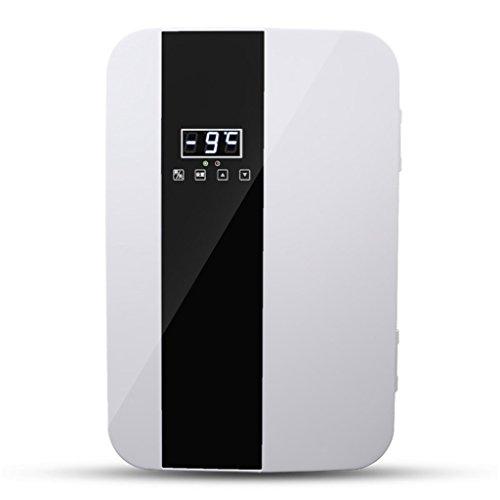 Refrigerador portátil del coche 22L 12V DC 220V AC Refrigeración dual de la base Refrigeración Refrigerador Mini Refrigerador compacto del refrigerador del doble del coche compacto (Color: Plata)