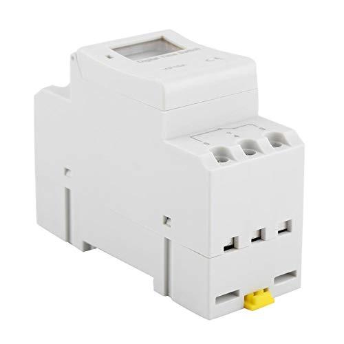 Eosnow Interruptor Temporizador de relé de 16 A, para Luces de neón(AC110V)