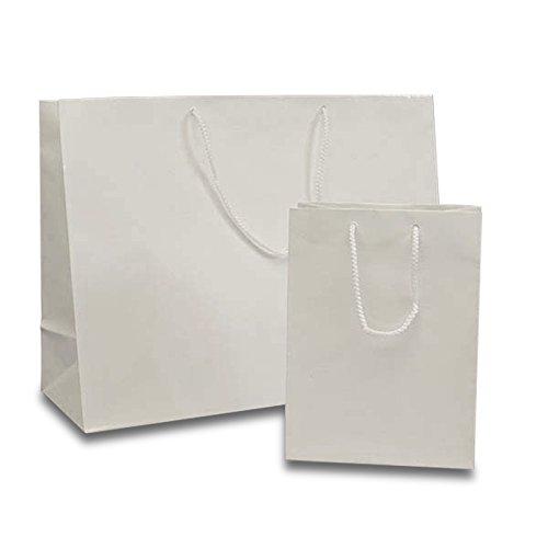 100ea - 12 X 5-1/2 X 17 Senior Glossy White Euro Bag