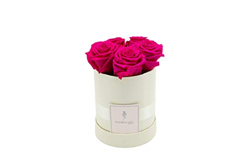 Blooming Gift - Infinity Flowerbox - Rosen-Box - Blumenbox - Ewige Blume - Geschenk - 3 Jahre haltbar - Creme-Weiß/Fuchsia - Große Small: H14 x Ø12cm