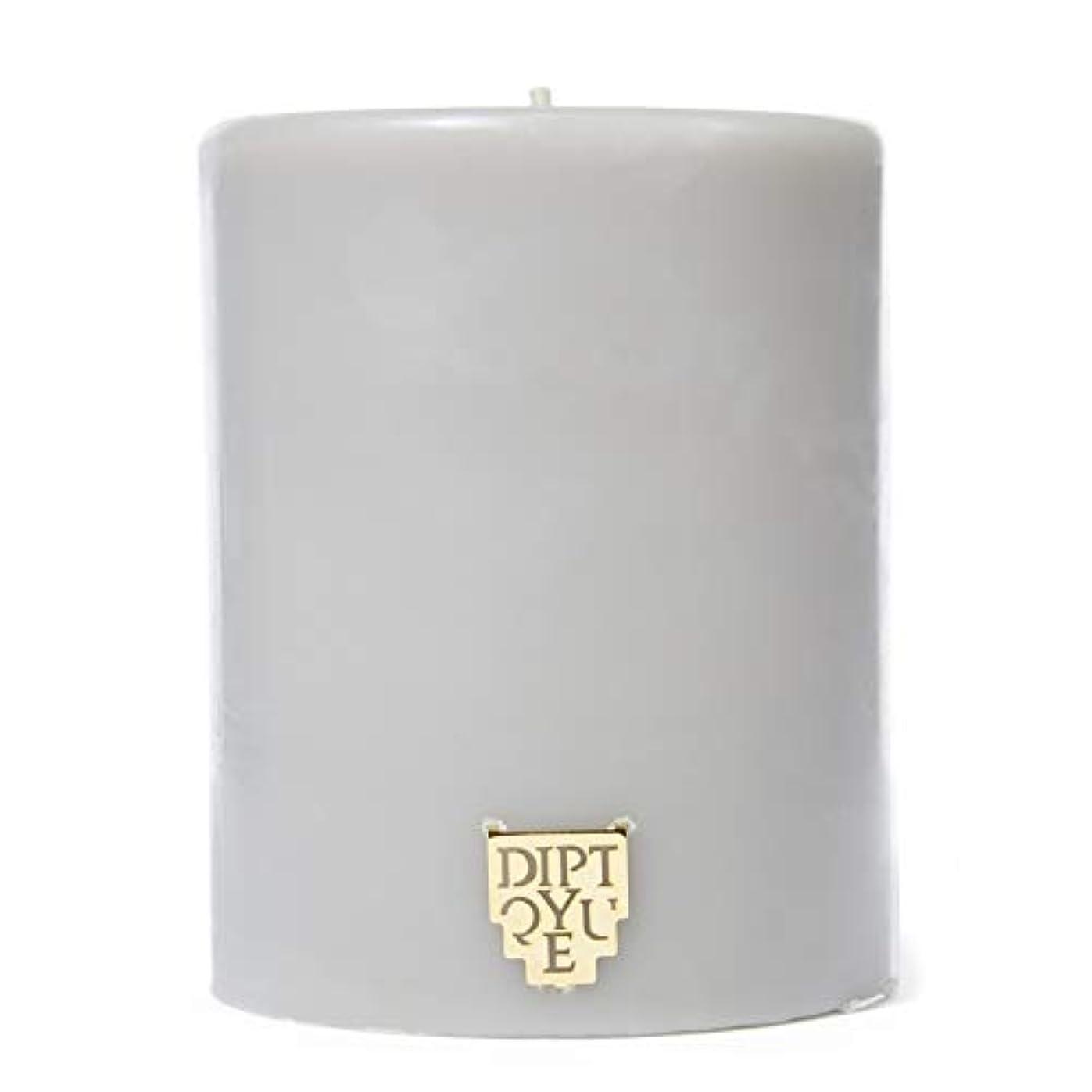 イノセンス充実賞賛する[Diptyque] DiptyqueのFeuデボワピラーキャンドル450グラム - Diptyque Feu De Bois Pillar Candle 450g [並行輸入品]