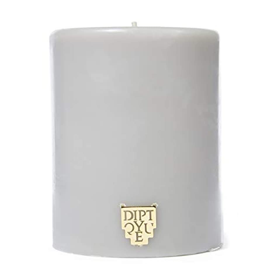 潮光電アルバニー[Diptyque] DiptyqueのFeuデボワピラーキャンドル450グラム - Diptyque Feu De Bois Pillar Candle 450g [並行輸入品]
