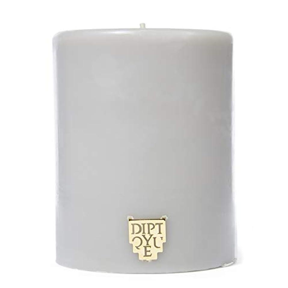 カブオーストラリア遅い[Diptyque] DiptyqueのFeuデボワピラーキャンドル450グラム - Diptyque Feu De Bois Pillar Candle 450g [並行輸入品]