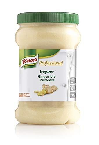 Knorr Professional Würzpaste Ingwer (natürlicher Geschmack, immer einsatzbereit) 1er Pack (1 x 750g)